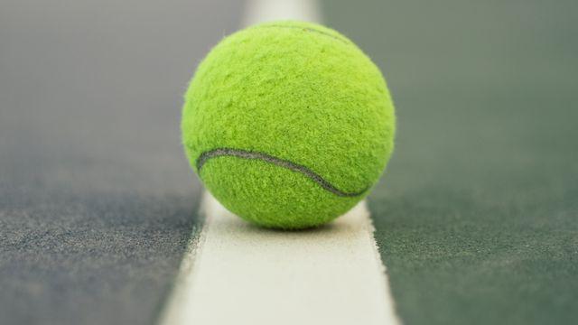 Korty do tenisa i padla